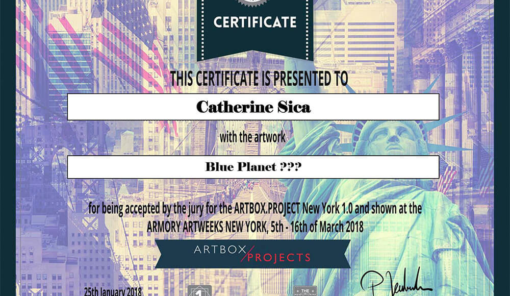 Stricoff New York Certificate